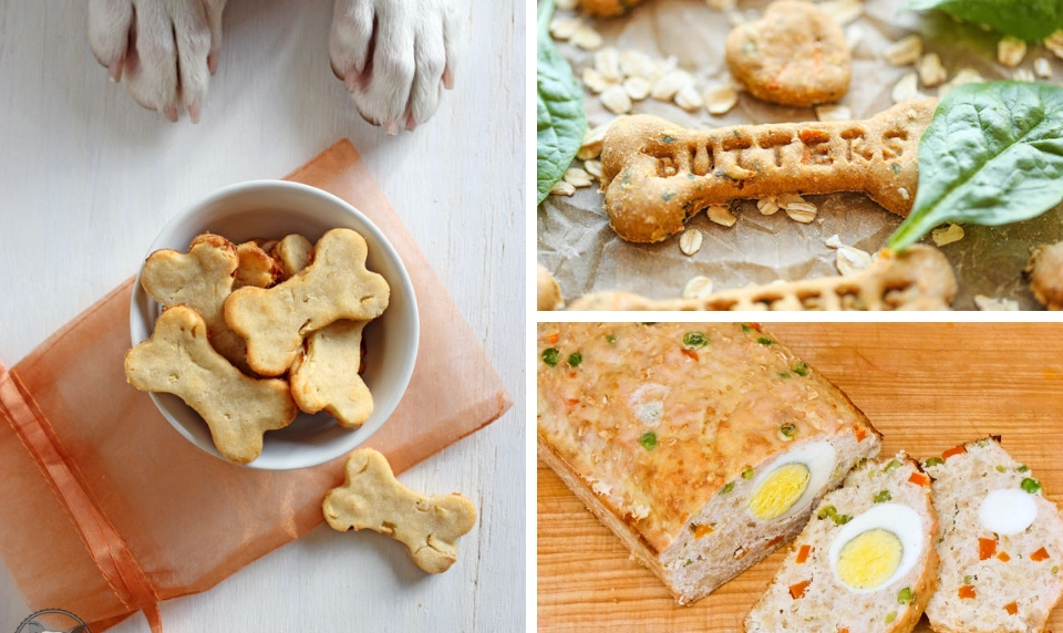15 Inexpensive Diy Homemade Dog Treats Your Pet Will Love