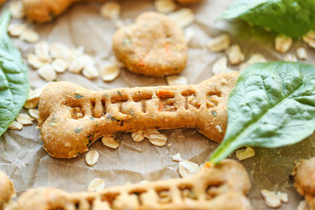 15 Best Homemade Dog Treats Recipes Style Motivation